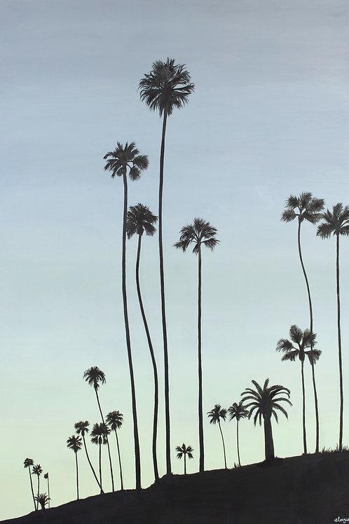Laguna Palms Fine Art Print