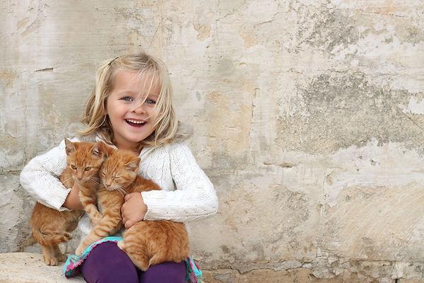 кошки, девочка, питомцы, котенок