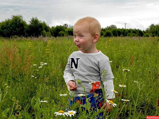 малыш, мальчик, поле, луг, озорник