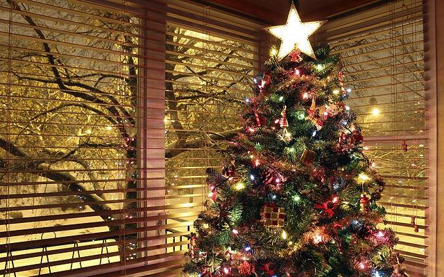 новогодняя елка, рождественская елка, новый год, рождество