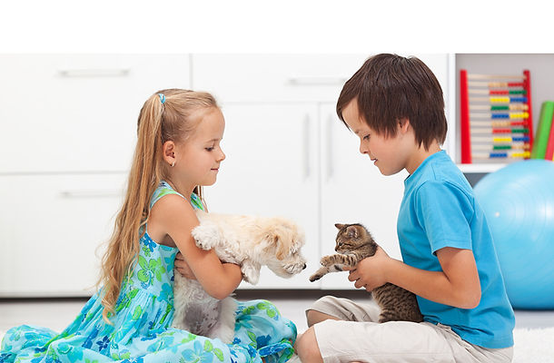девочка, мальчик, кошка, котенок, собакак, питомец