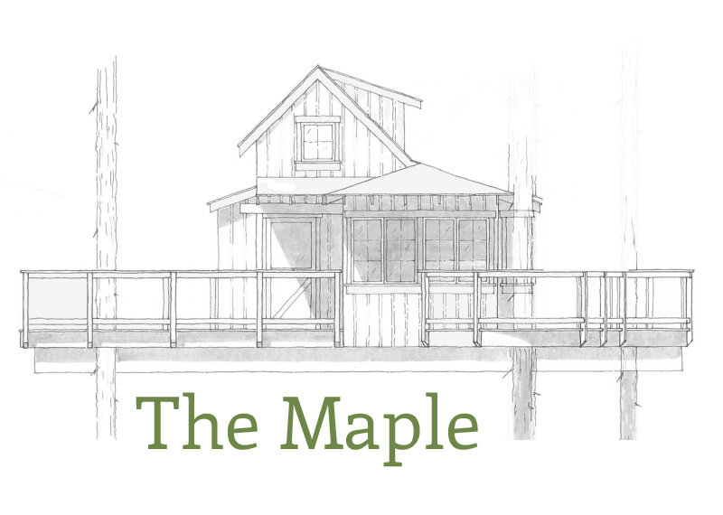 201905_Treehouse_Maple_01.jpg
