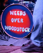 Weeds over woodstock.jpg