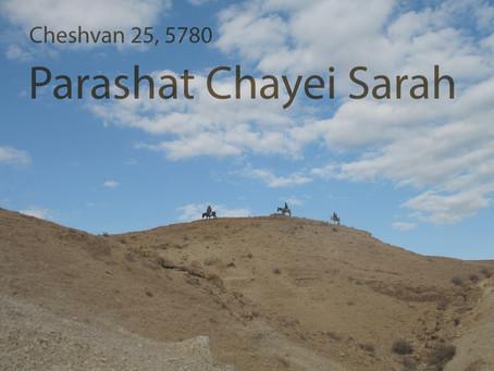 AUDIO ESSAY: Torah for the Earth - Chayei Sarah