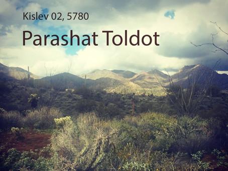 AUDIO ESSAY: Torah for the Earth - Toldot