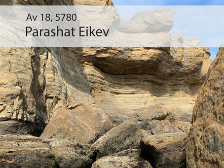 AUDIO ESSAY: Torah for the Earth - Eikev