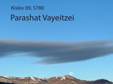AUDIO ESSAY: Torah for the Earth - Vayeitzei