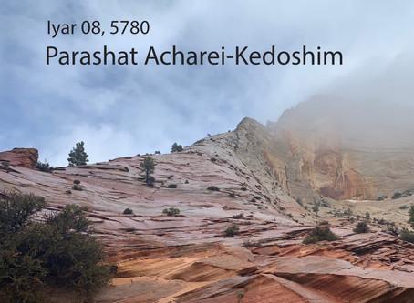 AUDIO ESSAY: Torah for the Earth - Acharei-Kedoshim