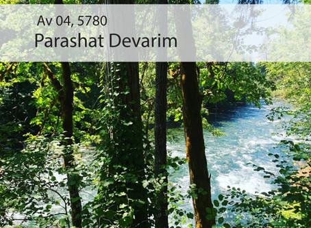 AUDIO ESSAY: Torah for the Earth - Devarim