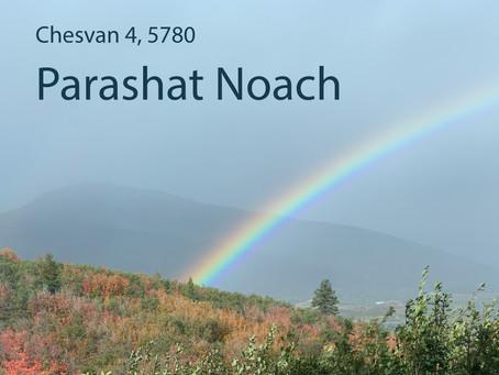 AUDIO ESSAY: Torah for the Earth - Parashat Noach