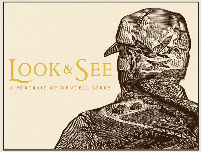 Look & See