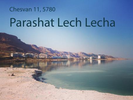 AUDIO ESSAY: Torah for the Earth - Lech Lecha