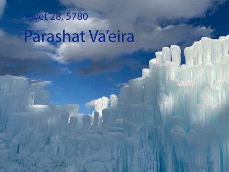 AUDIO ESSAY: Torah for the Earth - Va'eira