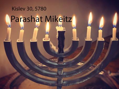 AUDIO ESSAY: Torah for the Earth - Mikeitz