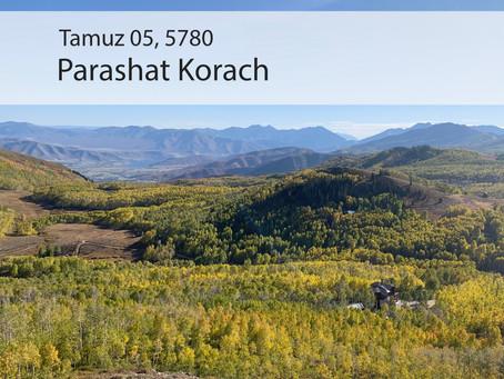 AUDIO ESSAY: Torah for the Earth - Korach