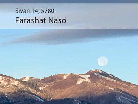 AUDIO ESSAY: Torah for the Earth - Naso