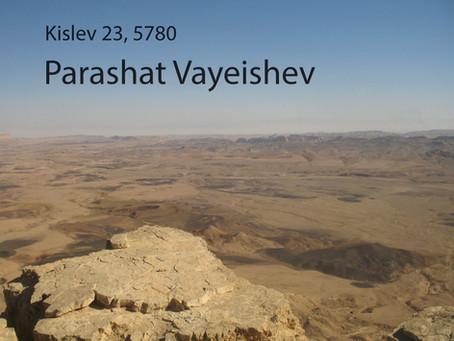 AUDIO ESSAY: Torah for the Earth - Vayeishev