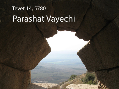 AUDIO ESSAY: Torah for the Earth - Vayechi
