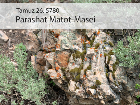 AUDIO ESSAY: Torah for the Earth - Matot-Masei
