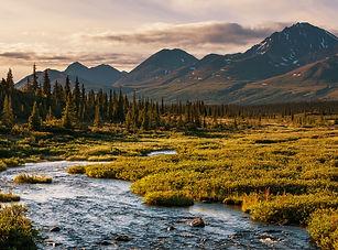 alaska_river.jpg