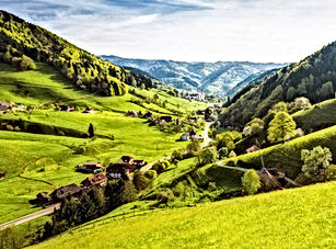 Almanya Karaorman'ın yeşil vadi manzarası