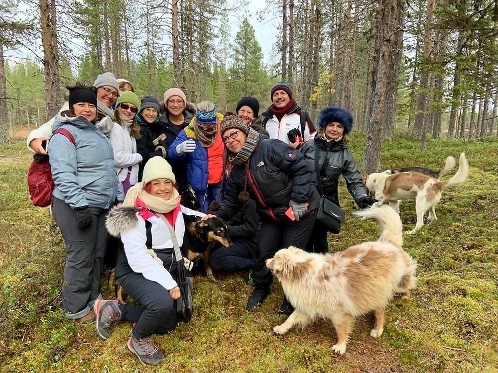 bir grup insan haskilerle Lapland ormanlarında eğleniyor.