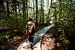 hiker in briesetal.jpg