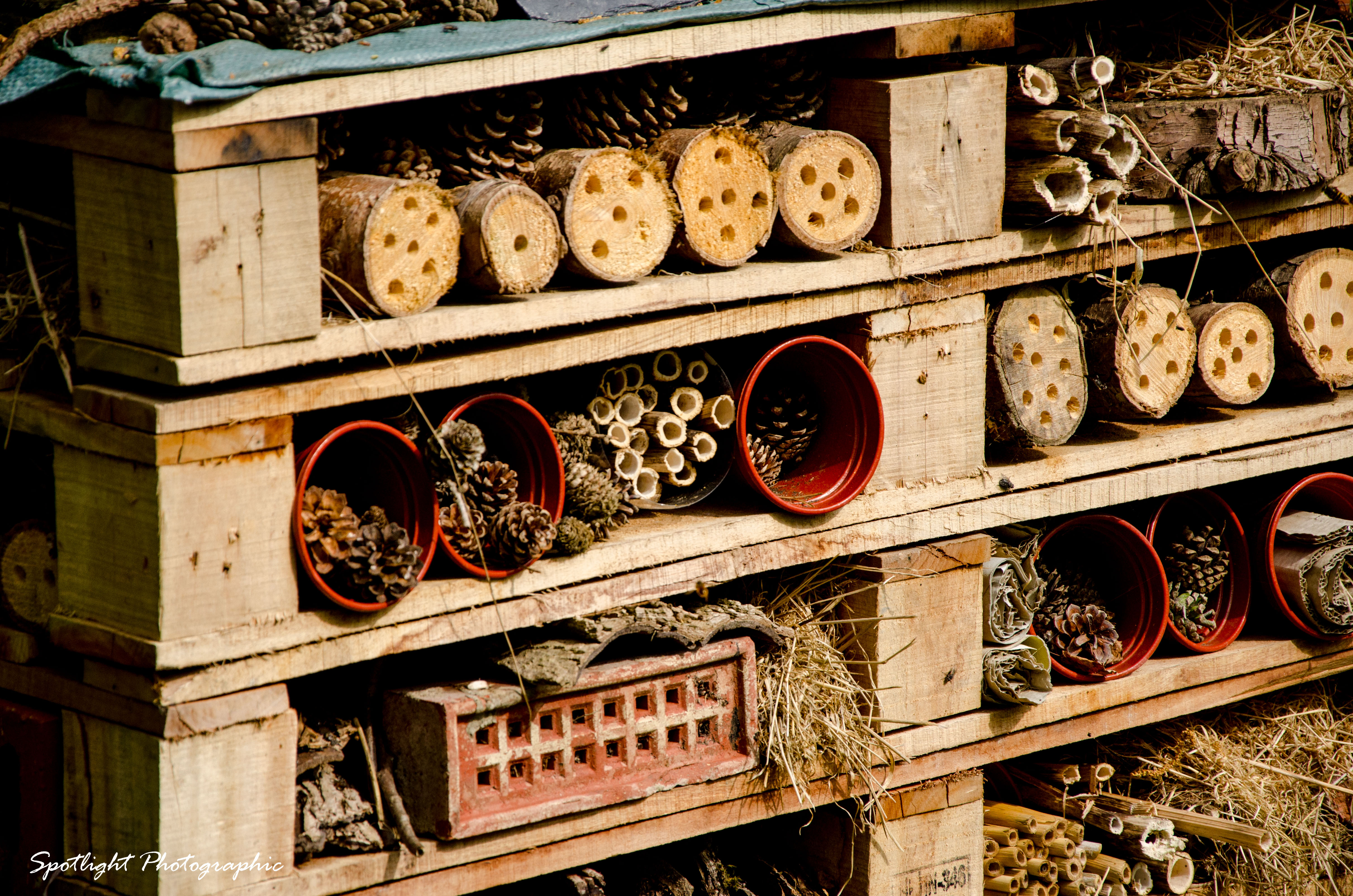 Homes for insects