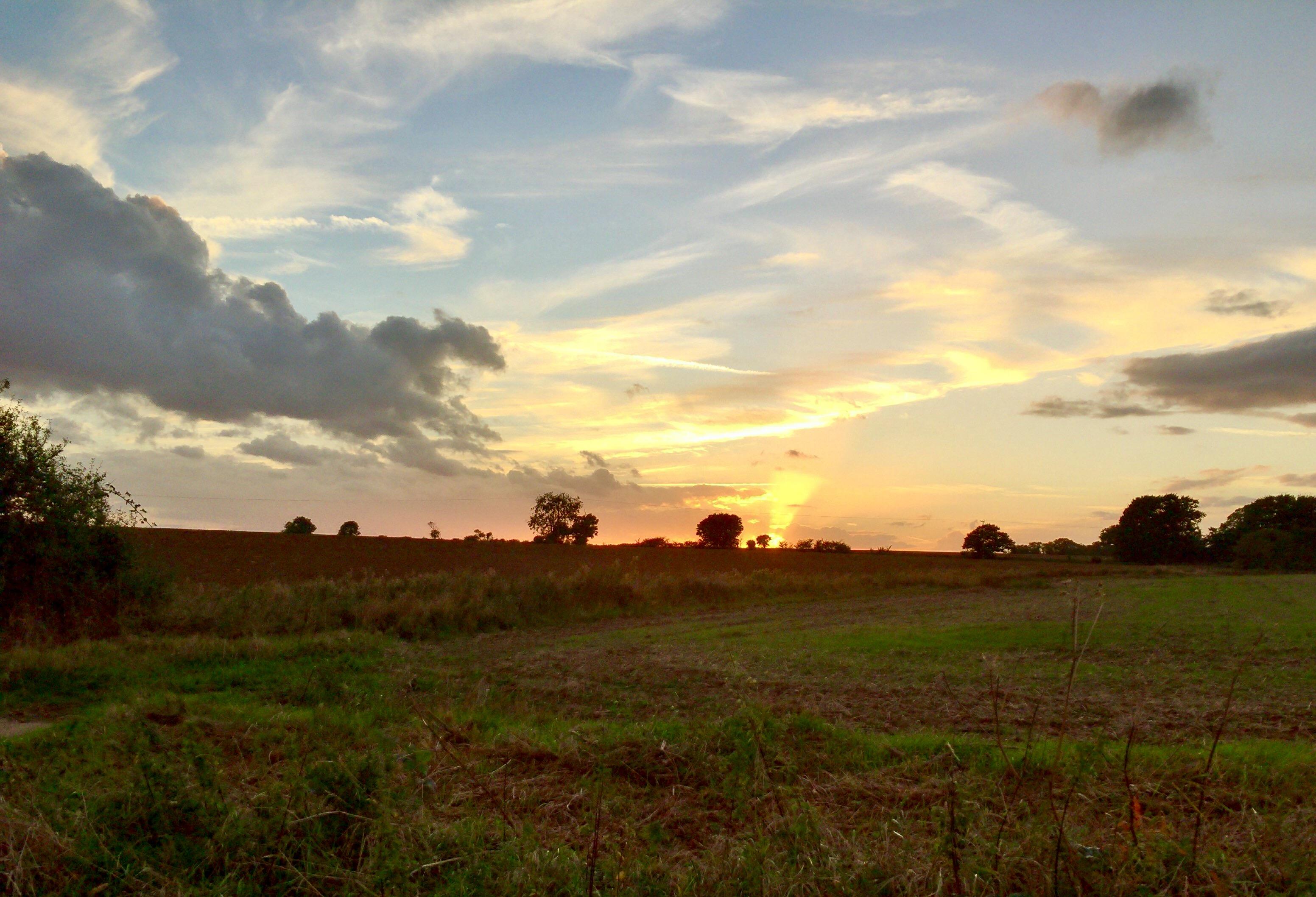 Late Autumnal Dawn