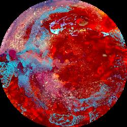 My Version of a Petri Dish