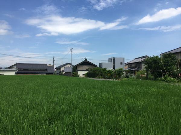 注文住宅竣工写真撮影、田んぼに連なる住宅風景
