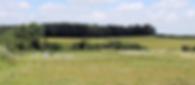 Træningsbane, Chedal Border Collies, hundetræning