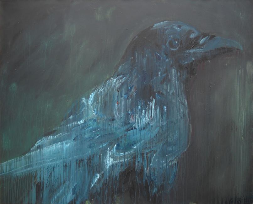 Crow bleu