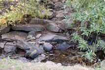 193-wellington-ave-trail-bc-2021-021-2000px.jpg