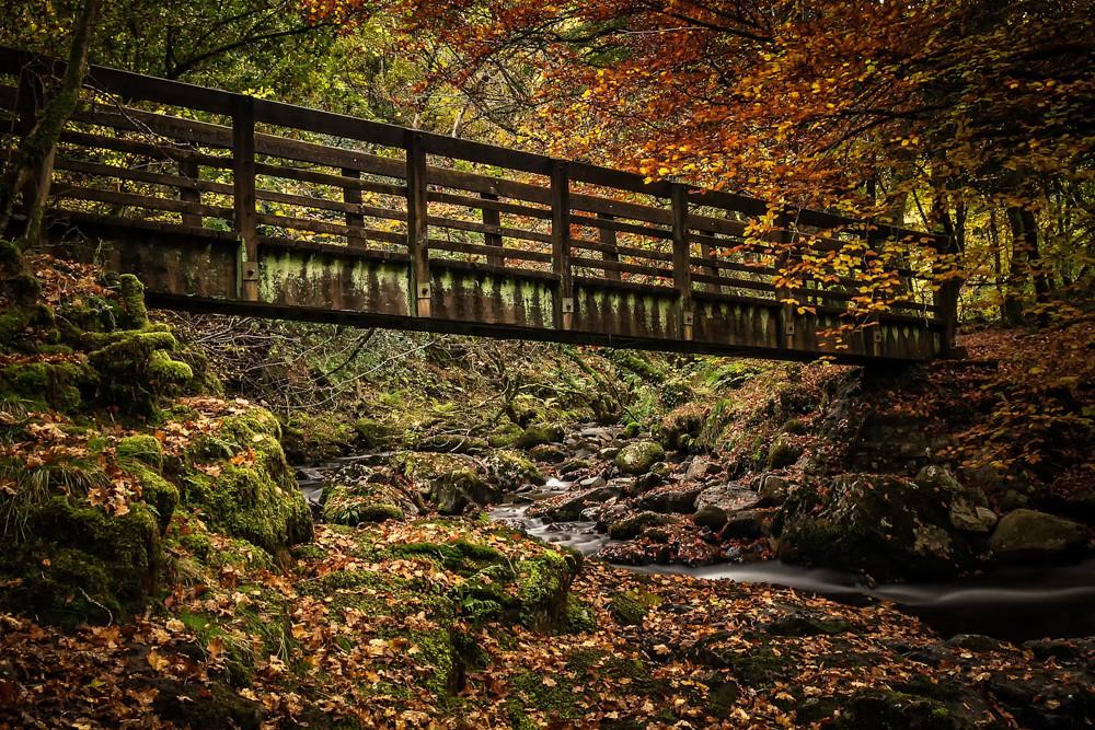 Tarka Bridge, Dartmoor