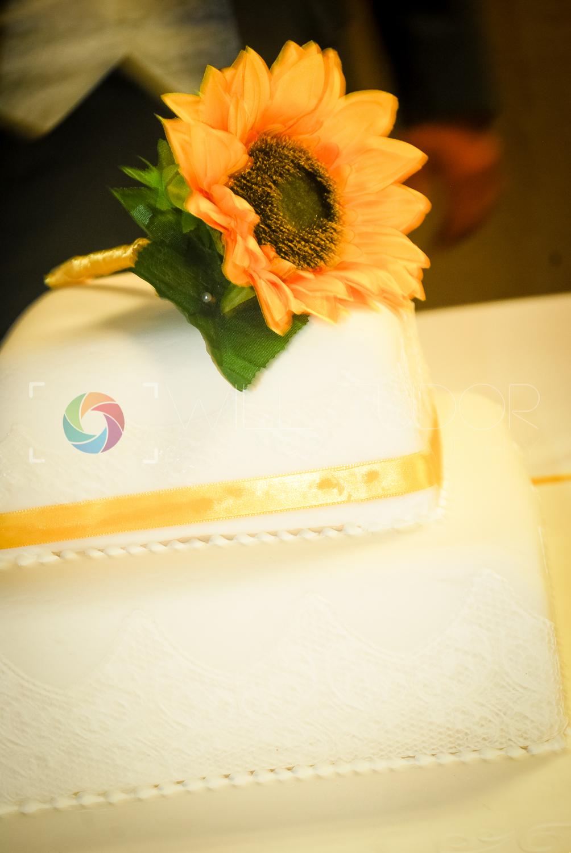 HILL - STANDRING WEDDING 189