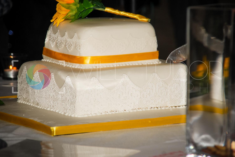 HILL - STANDRING WEDDING 405