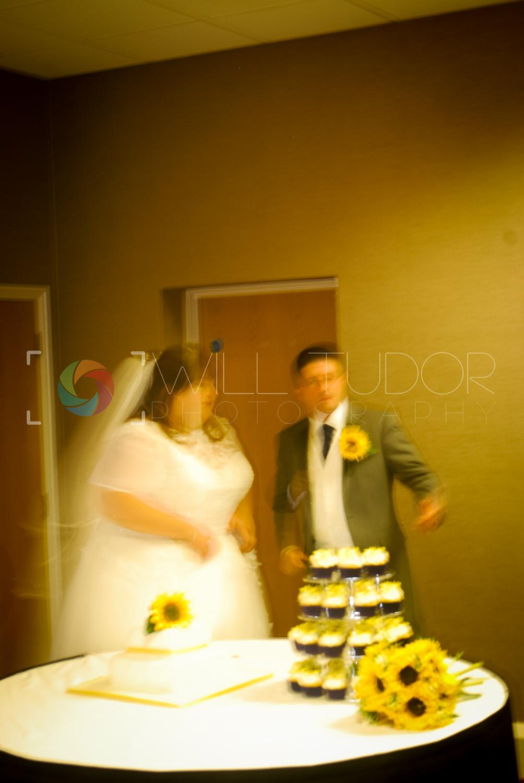 HILL - STANDRING WEDDING 190
