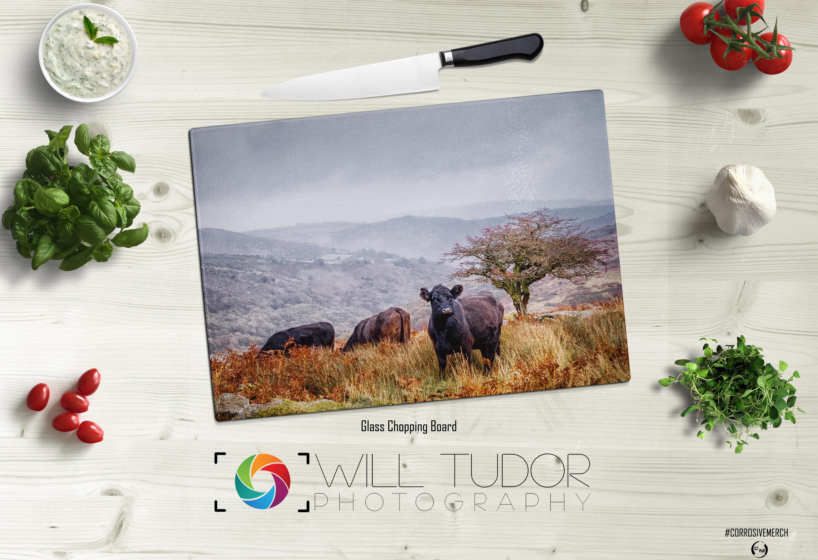 Dartmoor Cows