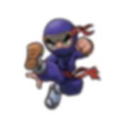 Shadow Strike Purple Ninja