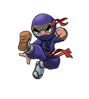 Shadow Strike Purple Ninja