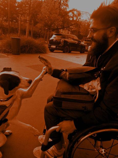 Un homme en fauteuil et un chien