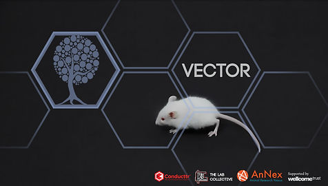 VectorText copy.jpg