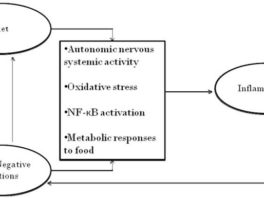 Food and Mood: The Interplay of Nutrition and State of Mind