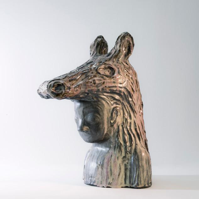 Peau d'âne (2018)