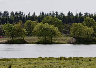 Vandkrafsøen, Holstebro