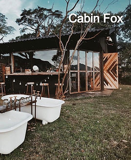 Cabana%20Fox_edited.jpg