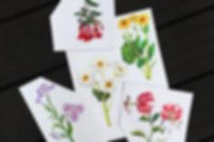 flowernew.jpg