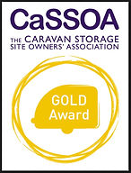 CaSSOA Gold Award.jpeg