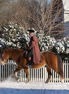 Colonial Williamsburg Winter_edited.jpg